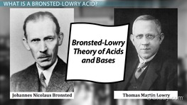 Bronsted-Lowry Acid: Definition & Examples