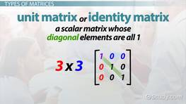Types of Matrices: Definition & Differences
