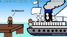 The Chinese Exclusion Act of 1882: Definition & Summary