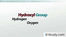 Introduction to Organic Molecules I: Functional Groups