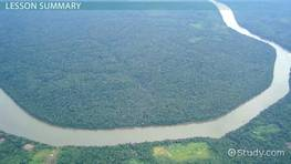 The Amazon River Basin: Geography & Climate