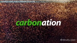 What is Carbon Dioxide? - Definition & Explanation