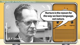 Psycholinguistics: Definition & Theory
