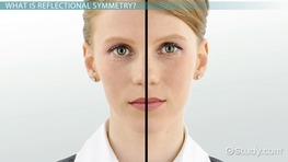 Reflectional Symmetry: Definition & Examples