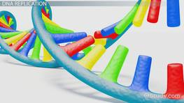DNA Sequencing: Definition, Methods & Applications