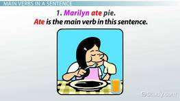 What is a Main Verb? - Definition & Examples