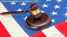 The Commerce Clause: Definition, Analysis & Cases