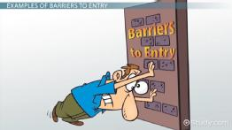 Barriers to Entry in Economics: Definition, Types & Examples