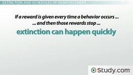 what is behavior modification definition techniques examples  what is behavior modification definition techniques examples video lesson transcript com