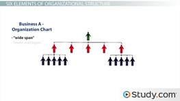 Organizational chart and hierarchy definition examples video organizational structure definition and influence on organizational behavior thecheapjerseys Image collections