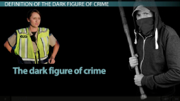 The Dark Figure of Crime: Definition & Statistics