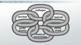 Chain of Infection: Definition & Example - Video & Lesson