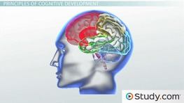 Child and Adolescent Development: Developmental Milestones & Nature vs. Nurture