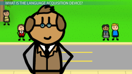 Chomsky's Language Acquisition Device: Definition & Explanation