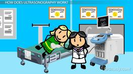 What Is Ultrasonography? - Definition, History & Uses