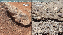 Conglomerate: Definition, Uses & Facts