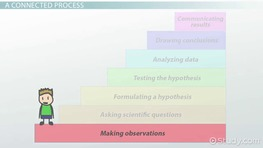 Connecting the Steps of the Scientific Method
