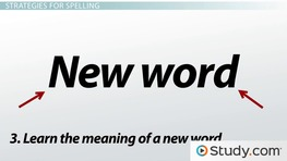Correct Spelling in Written Work: Strategies & Tips