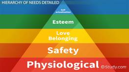 Maslow's Hierarchy of Needs: Definition, Theory & Pyramid