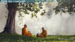What is a Bodhi Tree? - Meaning, Symbolism & History