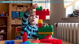 What Is a Developmental Delay in Children? - Definition, Causes & Symptoms
