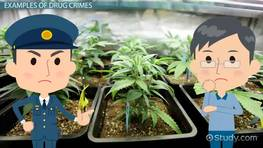 Drug Crimes: Definition & Examples
