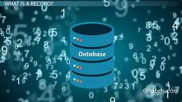 Database Record: Definition & Explanation