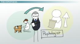 Elements of an Experiment in Psychology