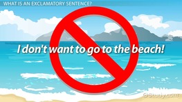 Exclamatory Sentence: Definition & Examples