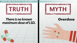 Facts & Myths About LSD