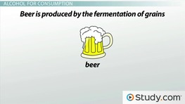 Yeast Fermentation: Using Fermentation to Make Alcohol