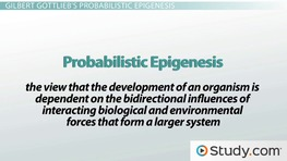 Gottlieb's Epigenetic Psychobiological Systems Perspective: Concepts & Definitions
