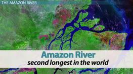 The Amazon River Basin Geography Climate Video Lesson - Amazon river location