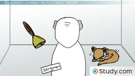 How Seligman's Learned Helplessness Theory Applies to Human Depression and Stress