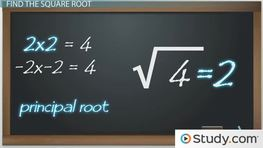 How to Find the Square Root of a Number
