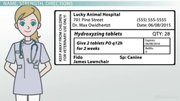 How to Label Prescription Medication for Veterinary Patients