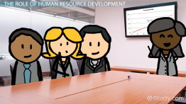 Human Resource Development: Function & Role
