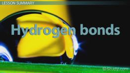 Hydrogen Bonds: Definition, Types & Formation