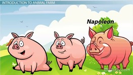 Napoleon's Quotes from Animal Farm