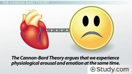 James-Lange & Cannon-Bard Theories of Emotion