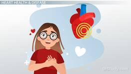 Heart Disease Lesson for Kids: Facts & Information