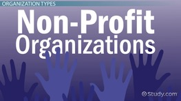 Not-For-Profit Organizations: Types & Examples