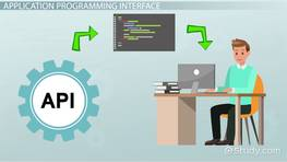 Application Programming Interface (API): Definition & Example