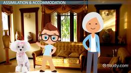 Assimilation & Accommodation in Psychology: Definition & Examples