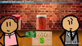 Law of Supply: Definition & Example