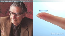 Lens of the Eye: Definition & Function