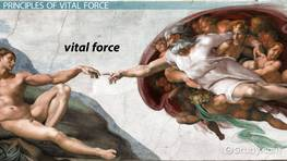 Vital Force Theory: Definition & Principles