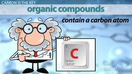 Naming Organic Compounds: Rules & Practice