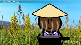 Farming in Ancient China: Lesson for Kids
