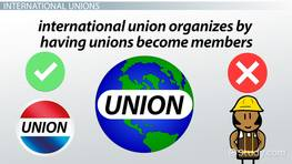National & International Unions: Structure & Organization